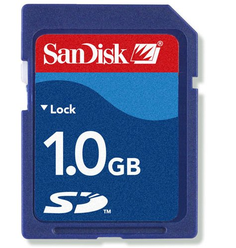 SANDISK SD MEMORY CARD - 1GB